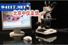 44X-6T显微图像溶点仪