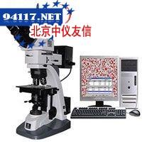 LWD200-4CS金相显微镜LWD200-4CS