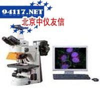 FL2荧光装置