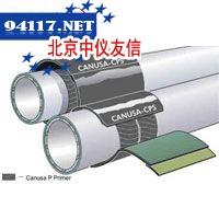 GTS-PP全球传输套管