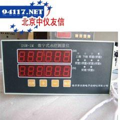 DSM-1数字式水位测量仪