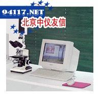 Wincell木细胞分析系统