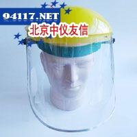 TP309防化面屏